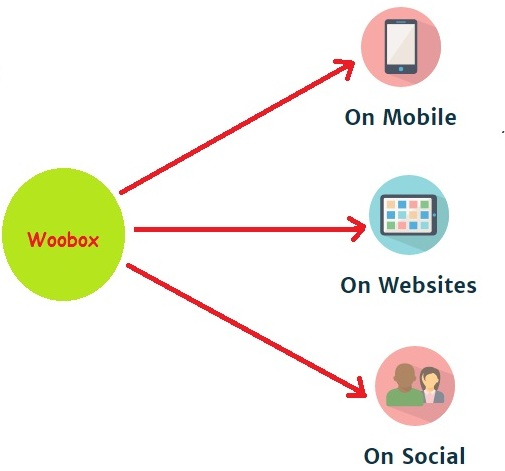 features-of-woobox