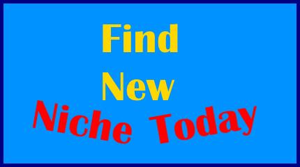 Find New Niche